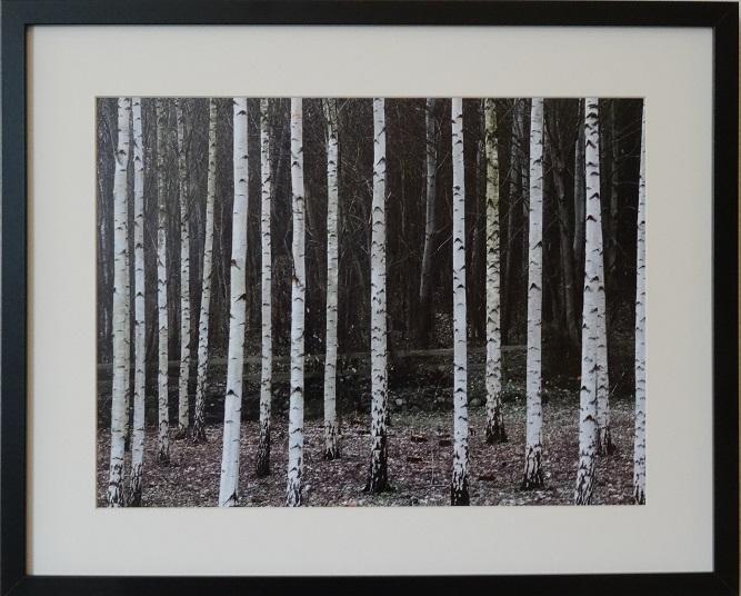 Eksempel på Kåre Holsts fotokunst.