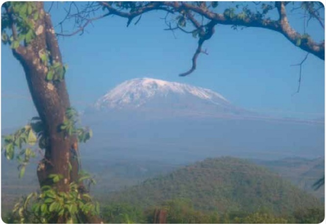 Kilimanjaro - Afrikas højeste bjerg, der er 5.895 m højt. Foto: Margit og Henrik Nielsen