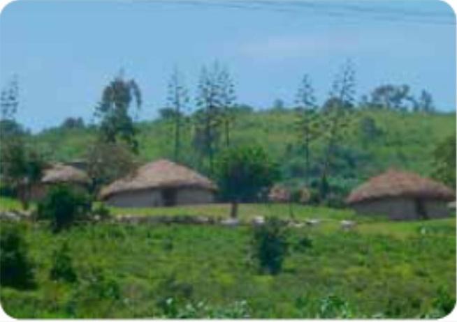 Masaierne hytter, der bliver bygget og vedligeholdt af kvinderne. Foto: Margit og Henrik Nielsen