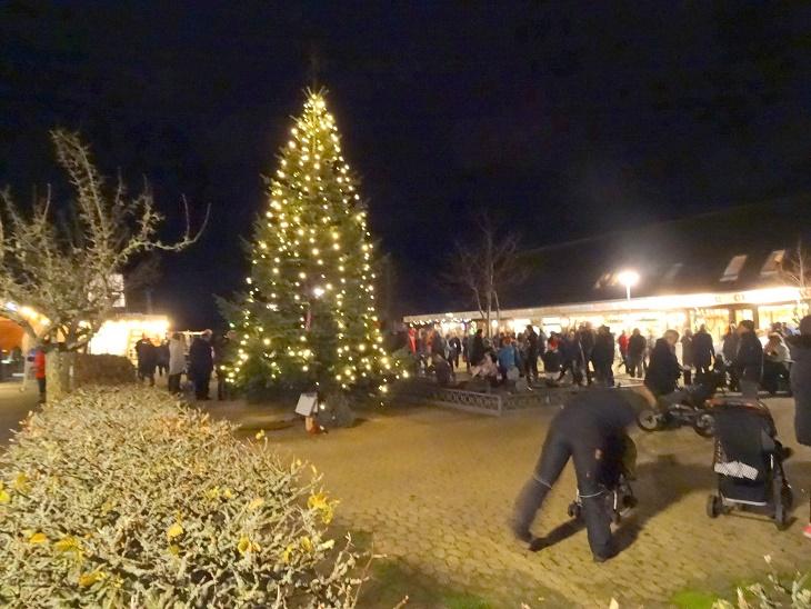 Juletræet blev symbolsk tændt med de mange fakler, der i optog var bragt til Centret fra Viskinge Kirke som et symbol på fred. Foto: F.P.